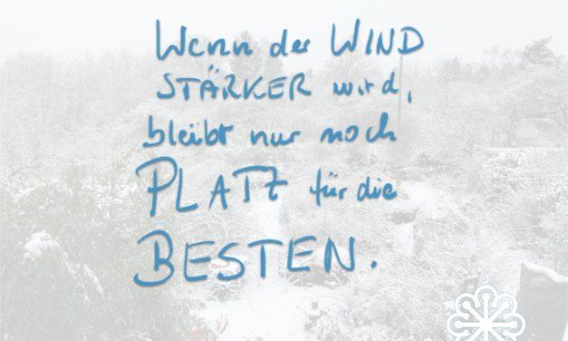 Wenn der Wind stärker wird…